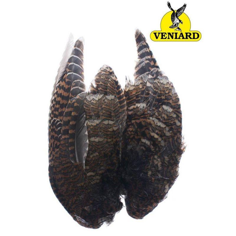 WOODCOCK WINGS VENIARD - 3