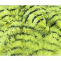 BLOOD BARRED MARABOU NATURE'S SPIRIT - 8