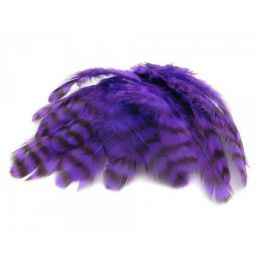 GRIZZLY COLLARING HACKLE PURPLE
