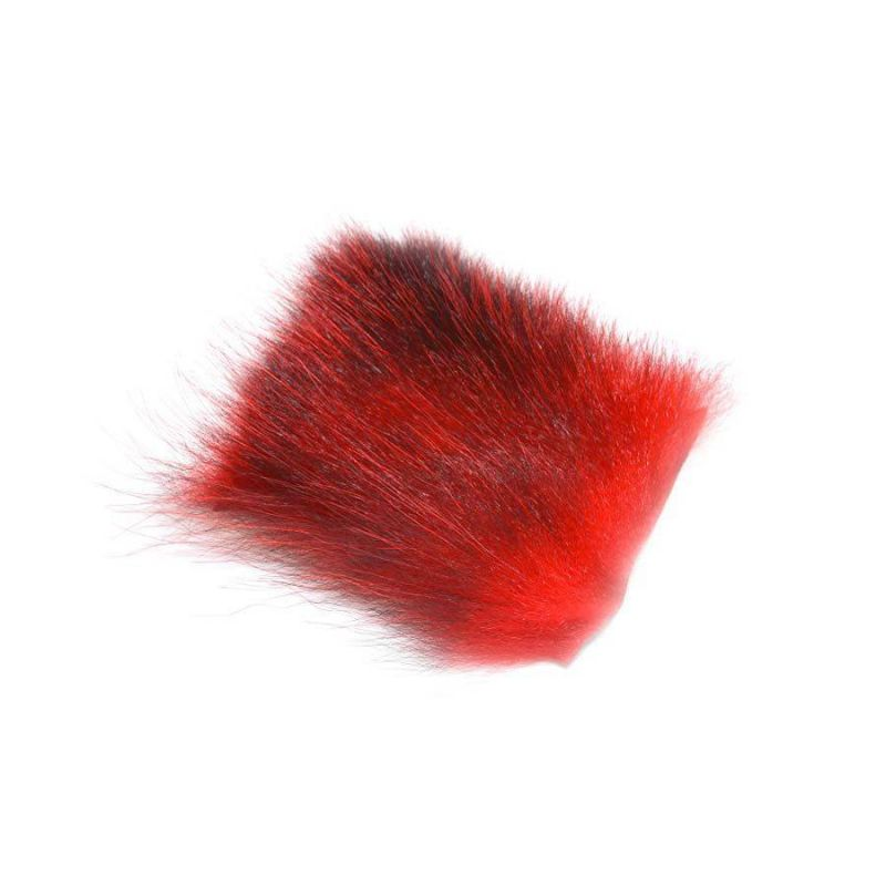 AMERICAN OPOSSUM RED