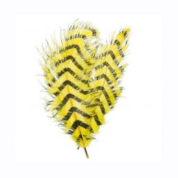 SIGNATURE INTRUDER DRABS - YELLOW BARRED