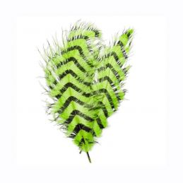 SIGNATURE INTRUDER DRABS - CHARTREUSE BARRED OPST - 1