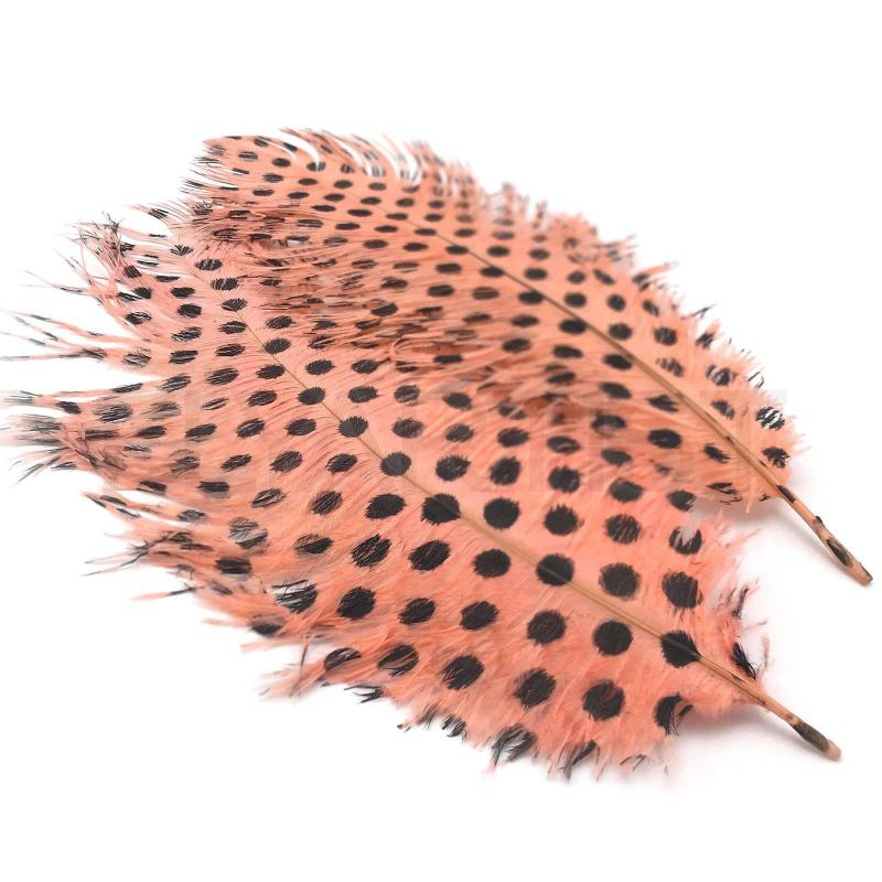 SIGNATURE INTRUDER DRABS - SHRIMP PINK DOTTED